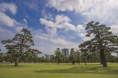故宫公园,东京,日本 免版税库存图片