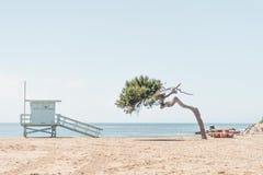 救生员塔和树俯视的海滩 免版税库存图片