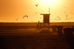 救生员塔和海鸥在日落 免版税库存照片