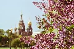 救主的圣彼德堡、基督的复活的教会溢出的血液的或大教堂 库存照片