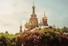 救主的基督圣彼德堡,俄罗斯的复活的教会溢出的血液的或大教堂 库存照片