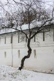 救主的Andronikov修道院石堡垒墙壁  莫斯科 免版税库存照片