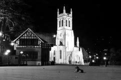 教会和狗在晚上,西姆拉,北印度B/W 图库摄影
