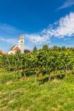 教会和葡萄园梅尔斯堡,德国,欧洲 库存照片