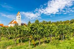 教会和葡萄园梅尔斯堡,德国,欧洲 免版税库存图片