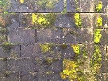 教会在闪电自然老照片被采取的墙壁里面的克罗地亚grunge是 免版税图库摄影