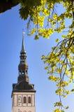 教会尼古拉斯niguliste st塔林视图 城市爱沙尼亚大厅老塔林托马斯塔城镇翻板天气 免版税库存图片
