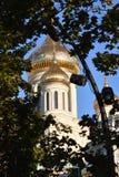 教会的Golden Dome在叶子中的 库存图片