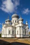 教会诞生 钓鱼者 俄国 库存照片