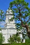 教会结构树 库存照片