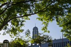 教会lds办公楼在一个晴天 免版税库存图片