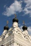 教会murom俄国三位一体 免版税库存图片