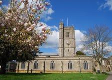 教区教堂在Axminster,德文郡 免版税库存照片