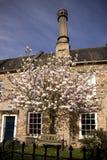 教区牧师在井, Somerset,英国关闭 免版税库存图片