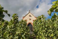教堂在葡萄园里 库存图片