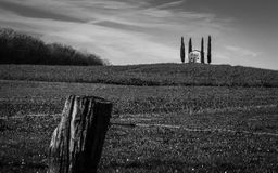 教堂在黑白的whith树 库存照片