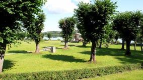 教堂遥远的公园婚礼 免版税库存照片
