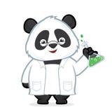 教授熊猫 图库摄影
