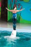 教练员讲话与海豚的在dolphinarium 免版税库存图片