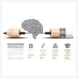 教育和学习步Infographic与雕刻脑子形状 库存图片