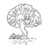 教育和知识的概念 免版税库存图片