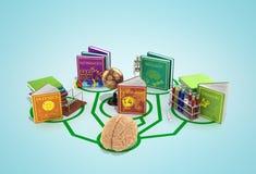 教育概念,脑子被连接到书线  向量例证