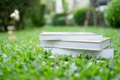 教育概念-说谎在草的书 库存照片