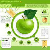 教育模板 免版税库存图片