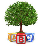 教育结构树 库存图片