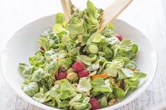 教规、莓、葡萄干、橄榄、坚果、红萝卜和小核服务沙拉  库存图片