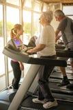 教练员锻炼帮助年长夫妇 资深夫妇 免版税库存照片