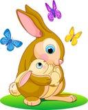 敞篷兔子 库存图片
