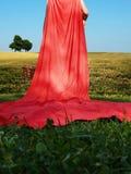 敞篷少许红色骑马 免版税库存图片