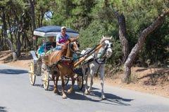 敞蓬旅游车在王子岛Buyukada 火鸡 免版税库存照片