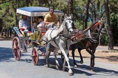 敞蓬旅游车在王子岛Buyukada 火鸡 免版税库存图片