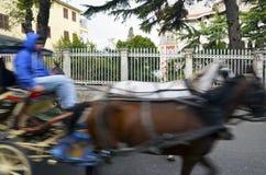 敞蓬旅游车载马的车辆 免版税库存照片