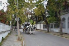 敞蓬旅游车Buyukada 马支架 库存图片
