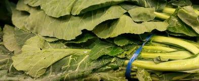 散叶甘兰新鲜的绿色照片 库存图片