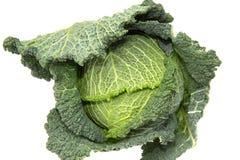 散叶甘兰绿化或无头甘蓝是一个典型的冬天菜 免版税库存图片