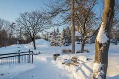 散步冬天场面 库存图片