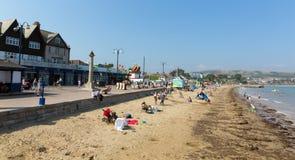 散步和海滩Swanage多西特夏天太阳的英国英国 免版税库存照片