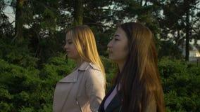 散步在公园的聊天的不同种族的女孩 股票视频