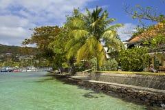 散步在贝基亚岛,加勒比 免版税库存照片