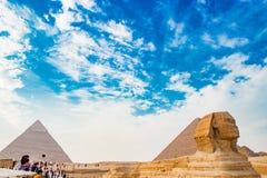 敬佩狮身人面象在开罗,埃及 免版税库存照片