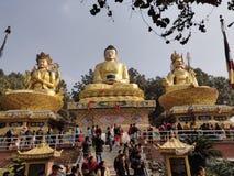 敬佩高塔姆菩萨的大雕象人们 图库摄影