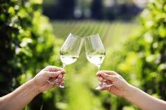 敬酒与二杯白葡萄酒 免版税库存图片