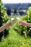敬酒与二杯白葡萄酒 免版税库存照片