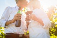 敬酒与酒杯的资深夫妇在葡萄园里 免版税库存照片