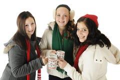敬酒圣诞节 免版税库存图片