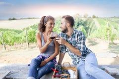 敬酒在葡萄园里的年轻夫妇在日落 免版税库存照片